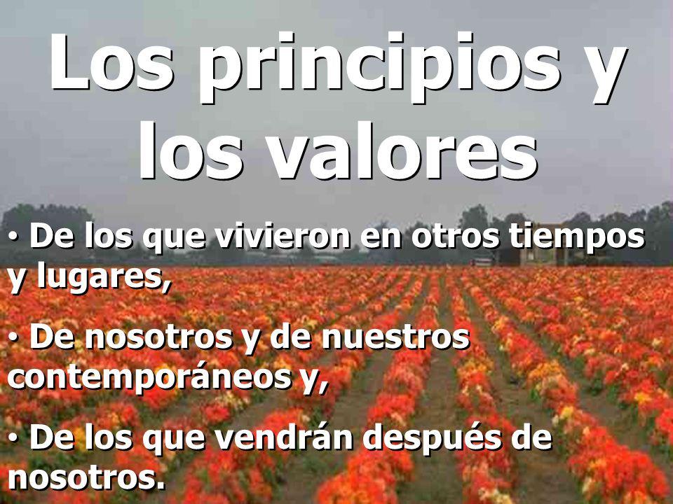 Los principios y los valores