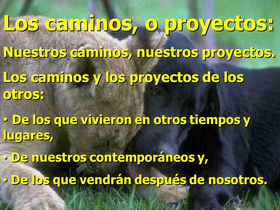 Los caminos, o proyectos: