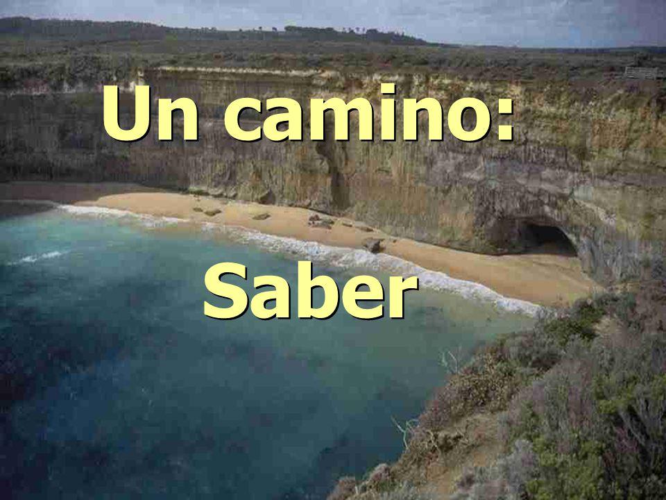Un camino: Saber