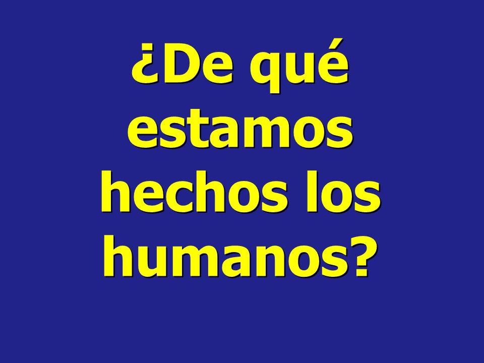 ¿De qué estamos hechos los humanos