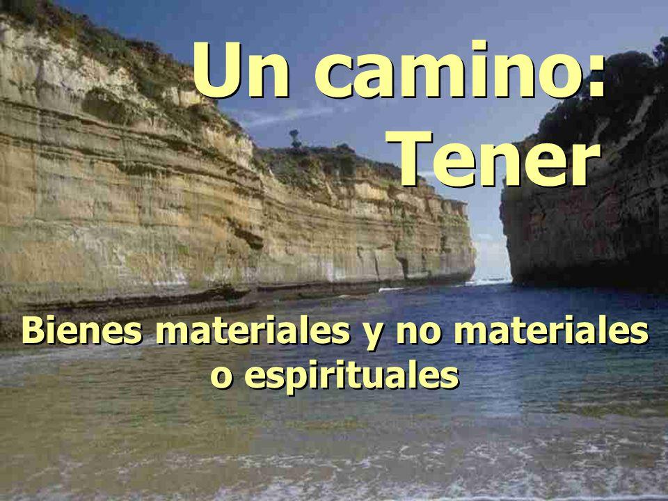 Bienes materiales y no materiales o espirituales