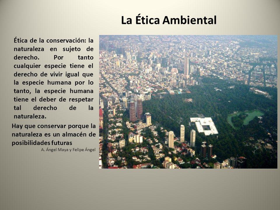 La Ética Ambiental