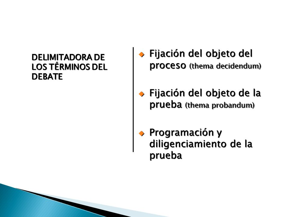 Fijación del objeto del proceso (thema decidendum)