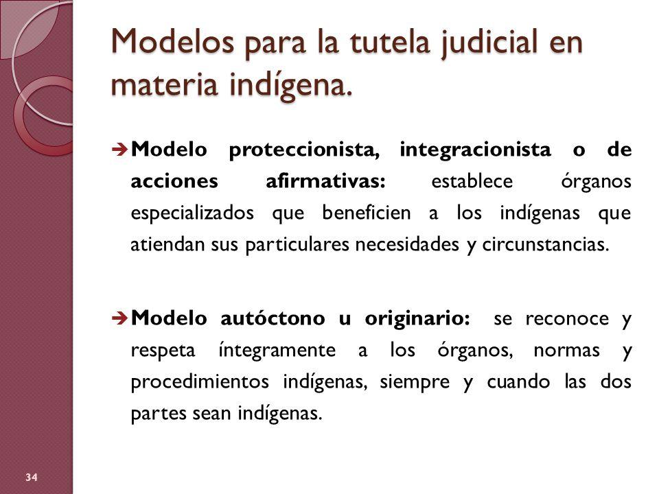 Modelos para la tutela judicial en materia indígena.