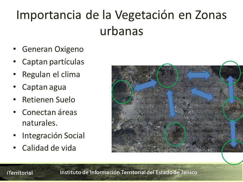 Importancia de la Vegetación en Zonas urbanas