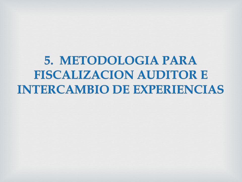 5. METODOLOGIA PARA FISCALIZACION AUDITOR E INTERCAMBIO DE EXPERIENCIAS