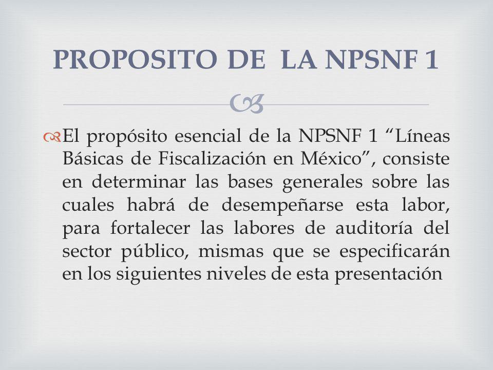 PROPOSITO DE LA NPSNF 1
