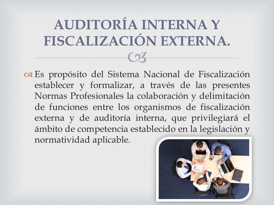 AUDITORÍA INTERNA Y FISCALIZACIÓN EXTERNA.