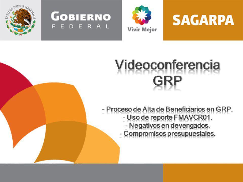 Videoconferencia GRP Proceso de Alta de Beneficiarios en GRP.