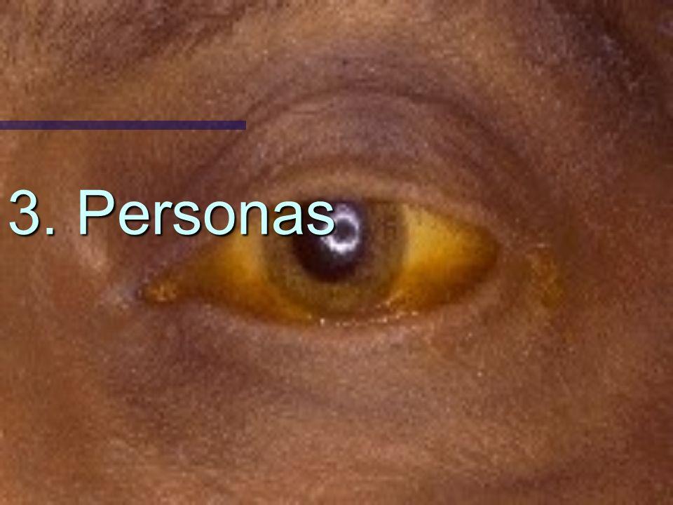 3. Personas