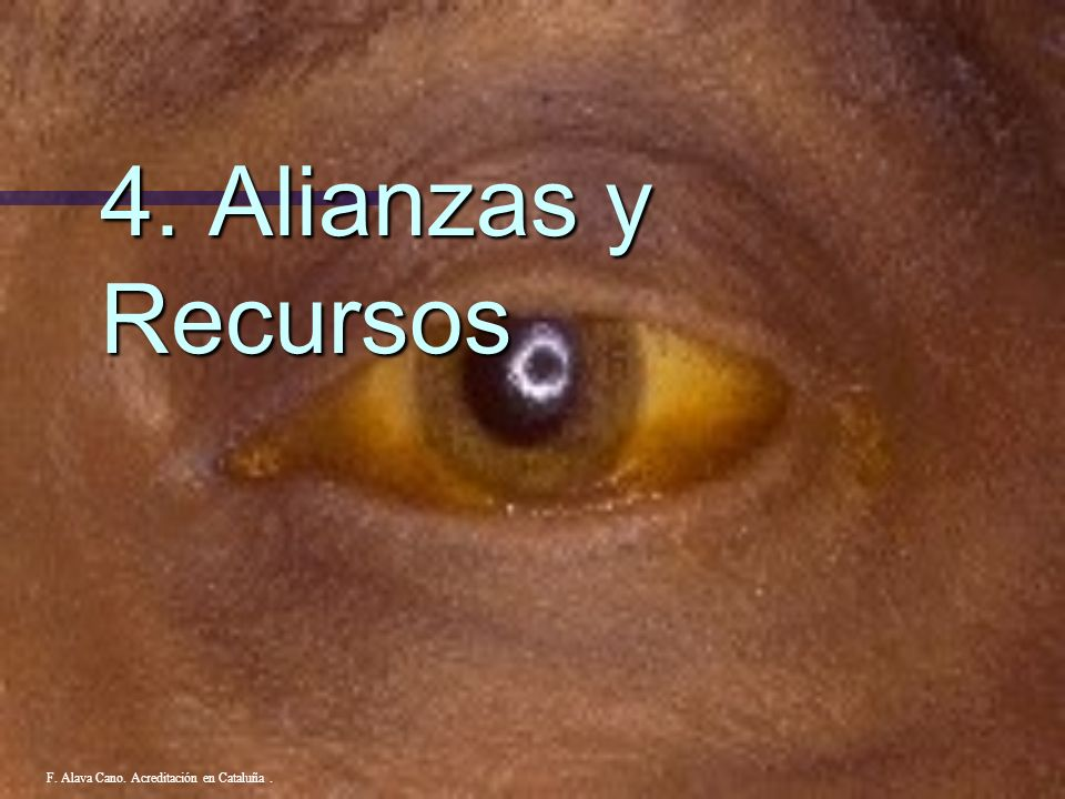 4. Alianzas y Recursos F. Alava Cano. Acreditación en Cataluña .