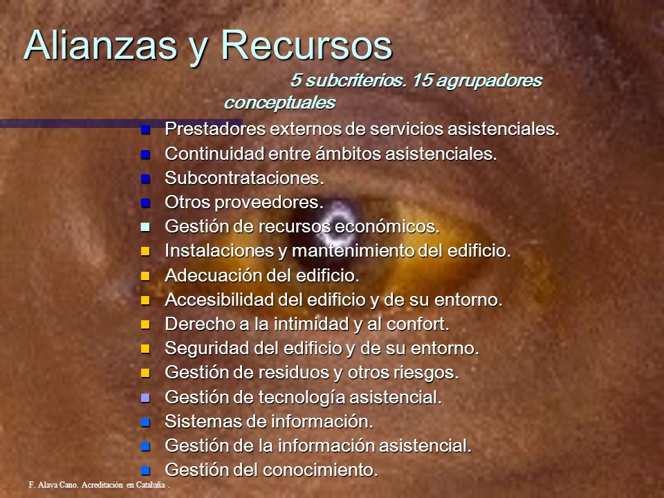 Alianzas y Recursos 5 subcriterios. 15 agrupadores conceptuales