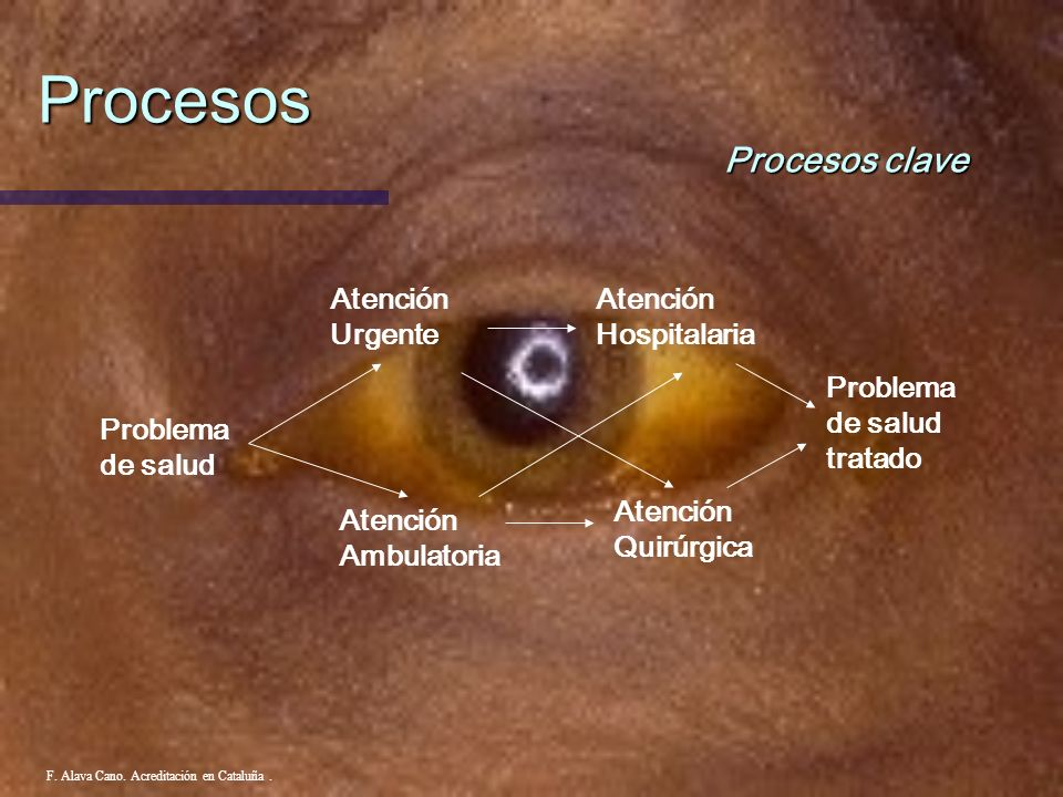 Procesos Procesos clave