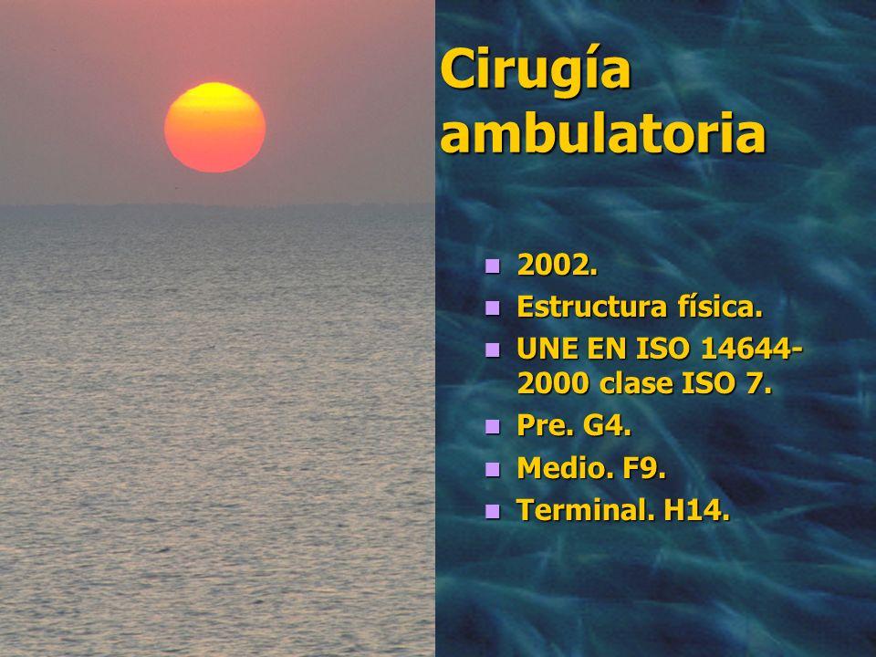 Cirugía ambulatoria 2002. Estructura física.