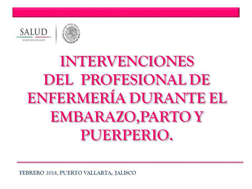 DEL PROFESIONAL DE ENFERMERÍA DURANTE EL EMBARAZO,PARTO Y PUERPERIO.