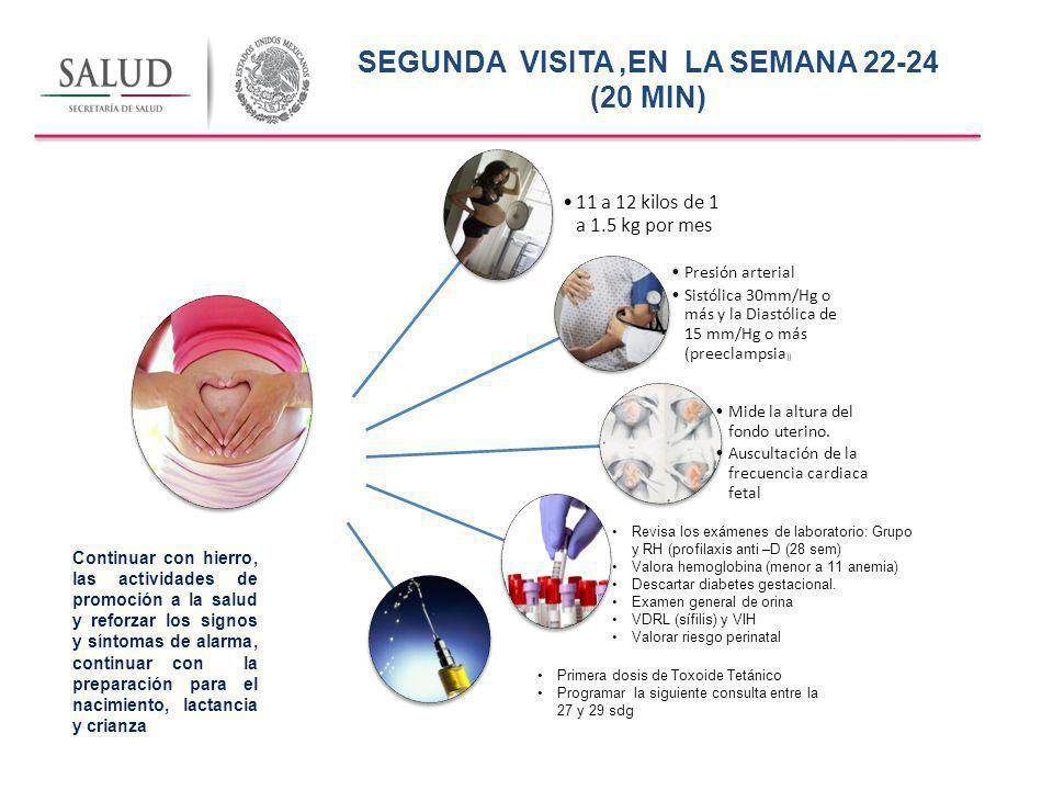 SEGUNDA VISITA ,EN LA SEMANA 22-24