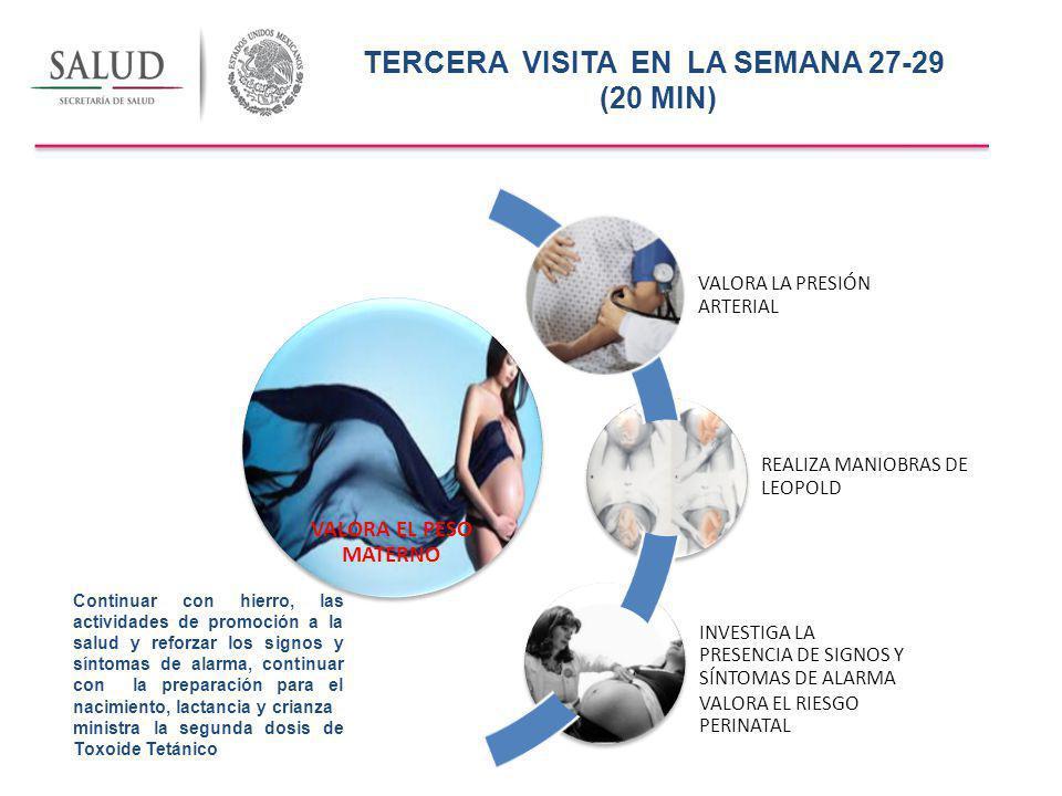 TERCERA VISITA EN LA SEMANA 27-29