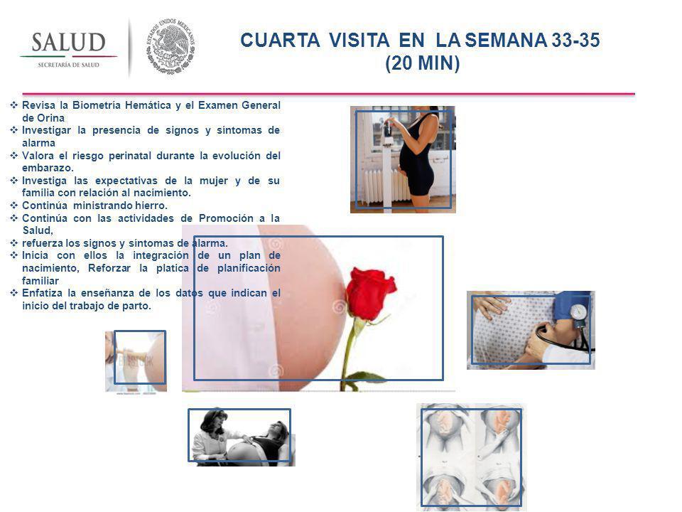 CUARTA VISITA EN LA SEMANA 33-35