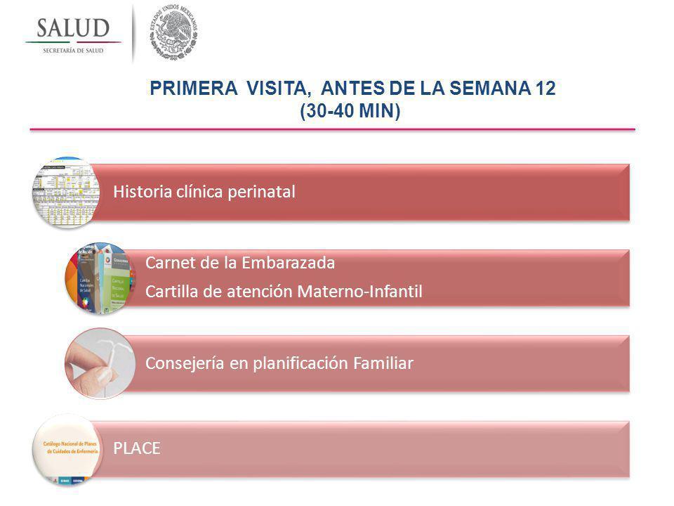 PRIMERA VISITA, ANTES DE LA SEMANA 12