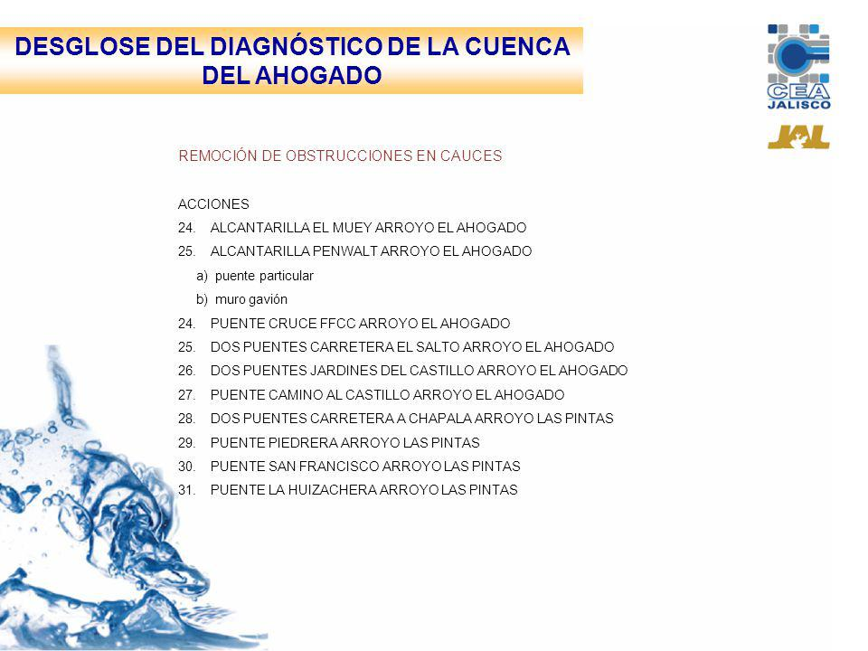 DESGLOSE DEL DIAGNÓSTICO DE LA CUENCA DEL AHOGADO