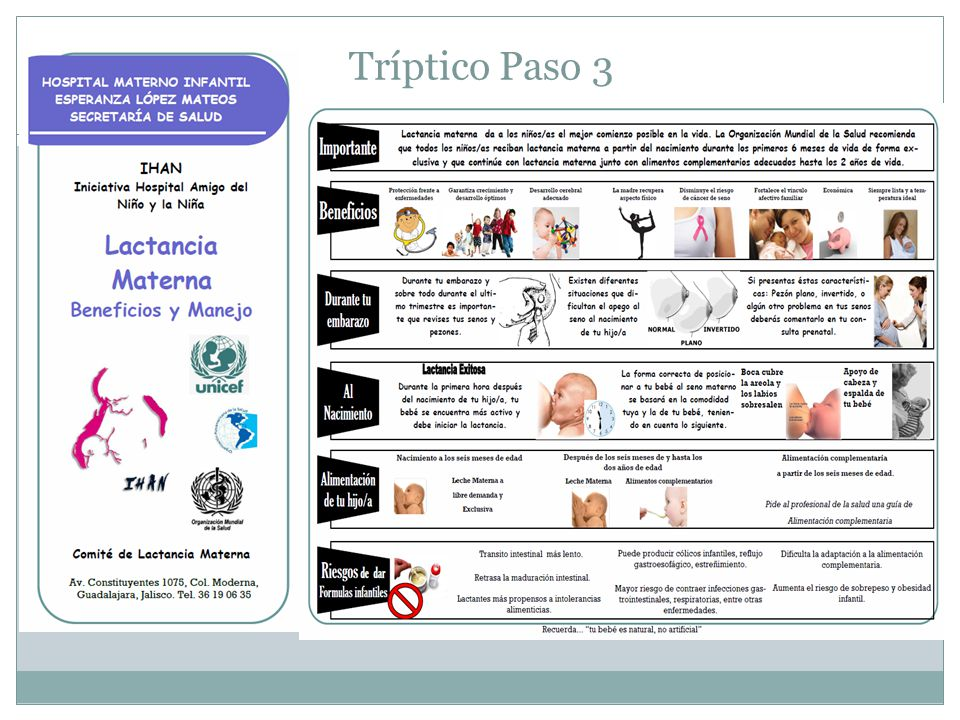 Tríptico Paso 3