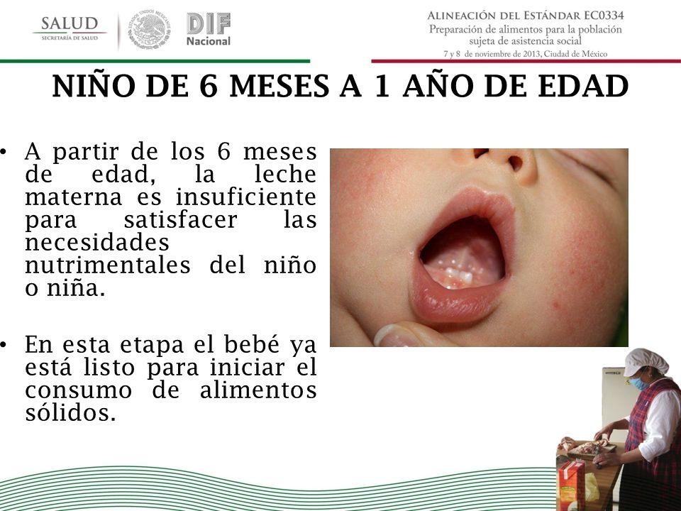 NIÑO DE 6 MESES A 1 AÑO DE EDAD
