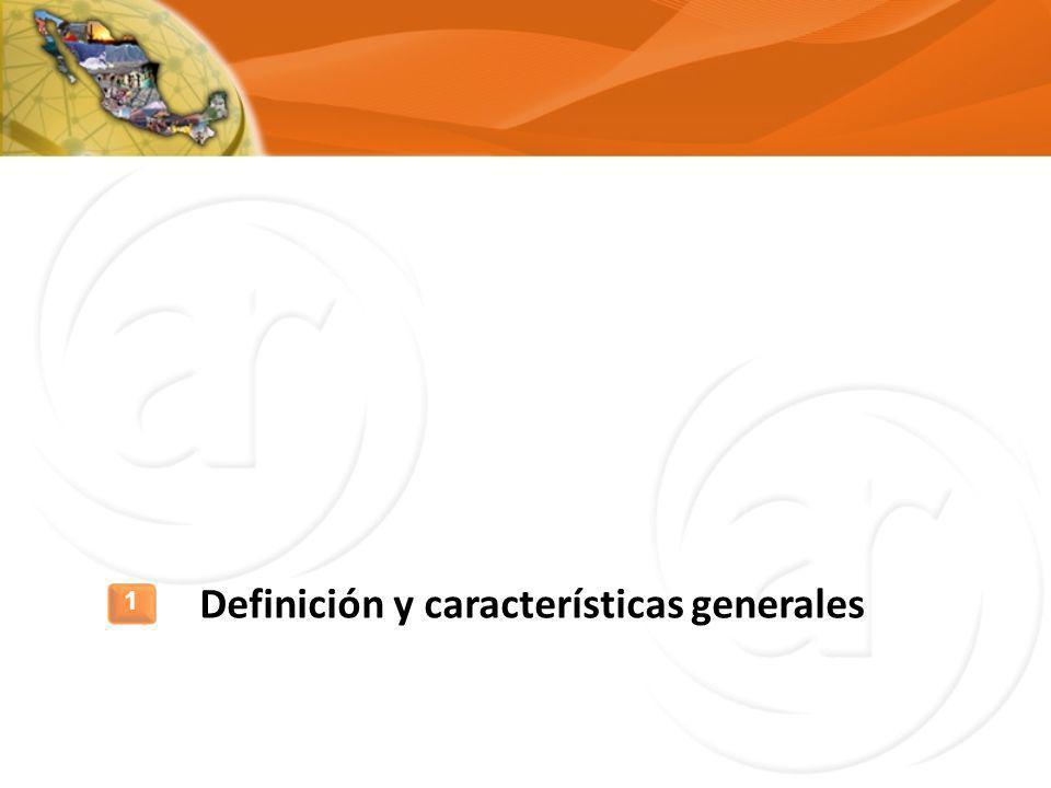 Definición y características generales