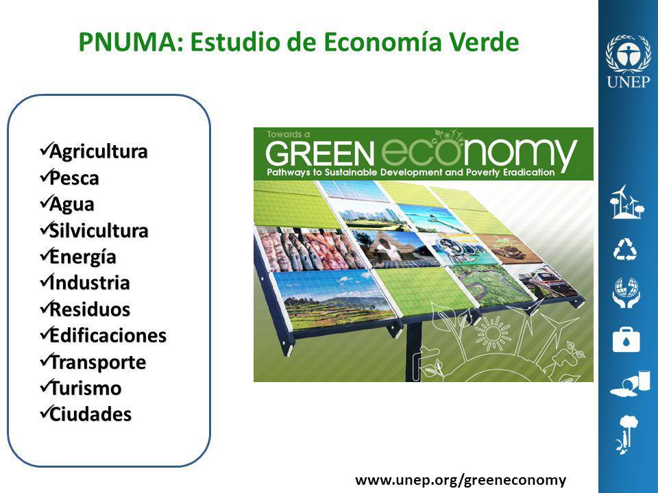 PNUMA: Estudio de Economía Verde