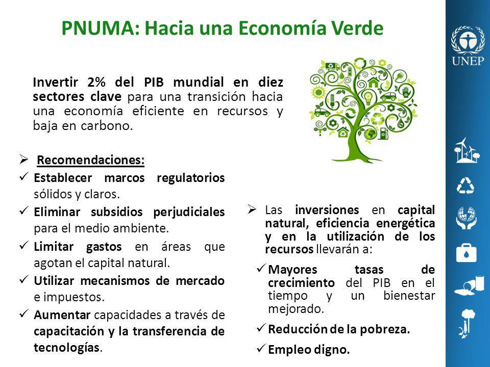 PNUMA: Hacia una Economía Verde