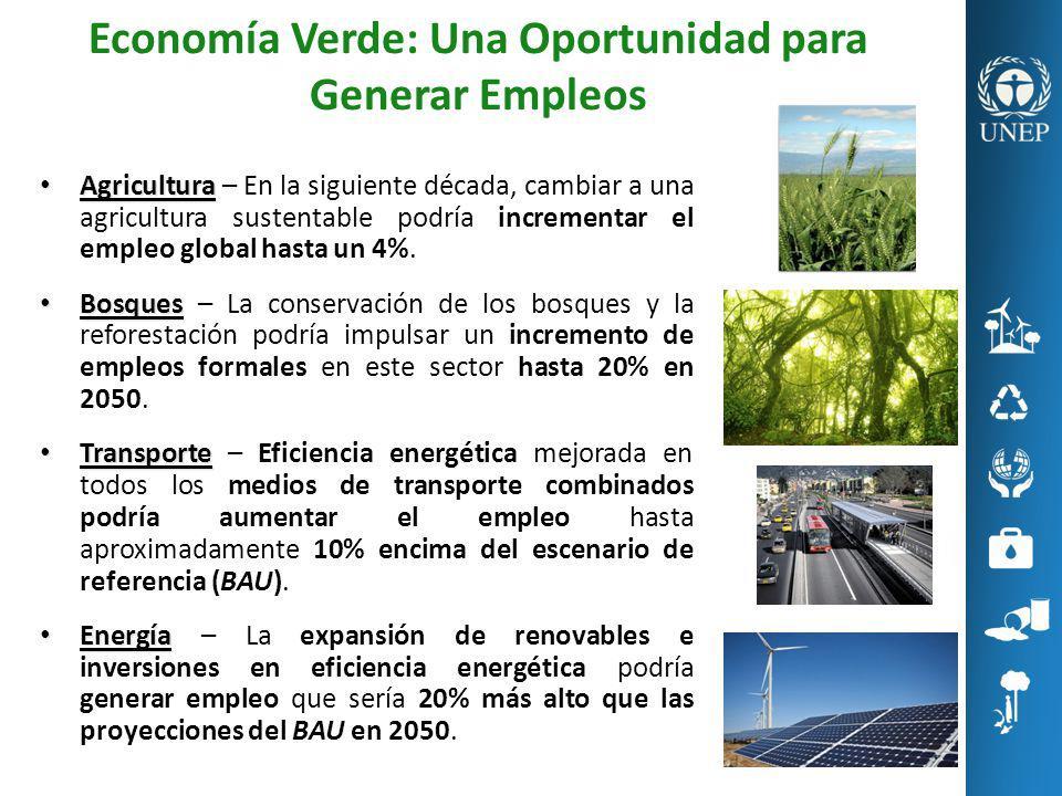 Economía Verde: Una Oportunidad para Generar Empleos