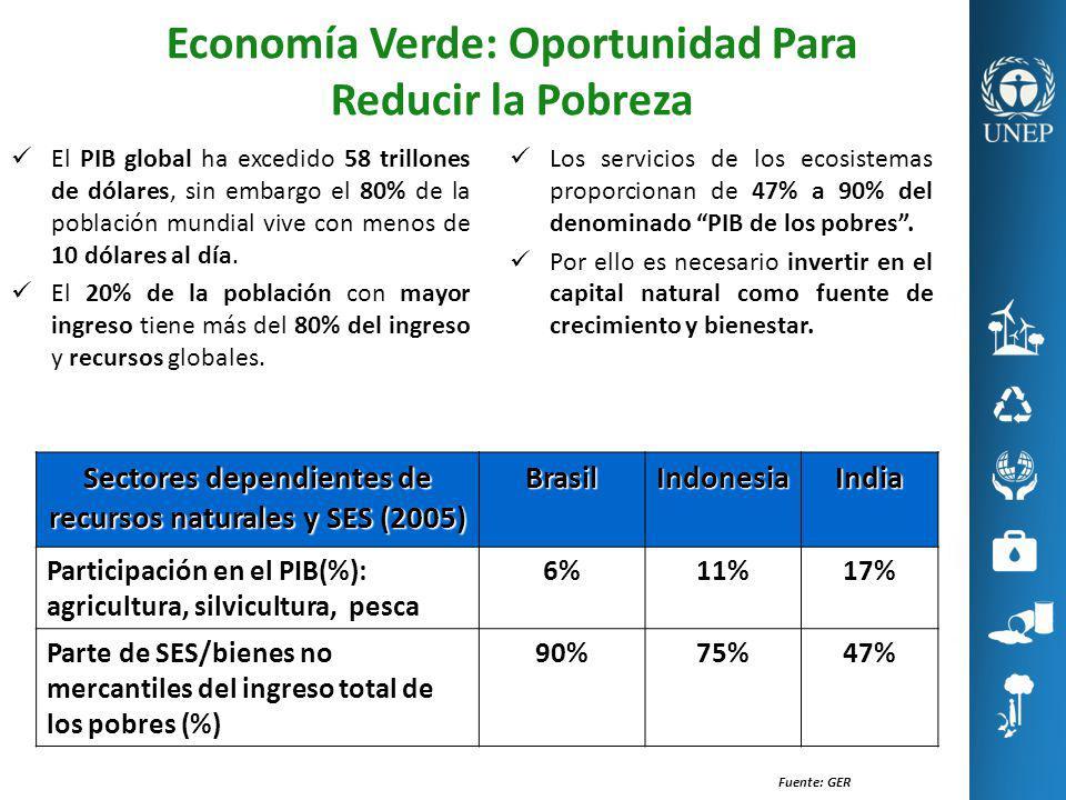 Economía Verde: Oportunidad Para Reducir la Pobreza