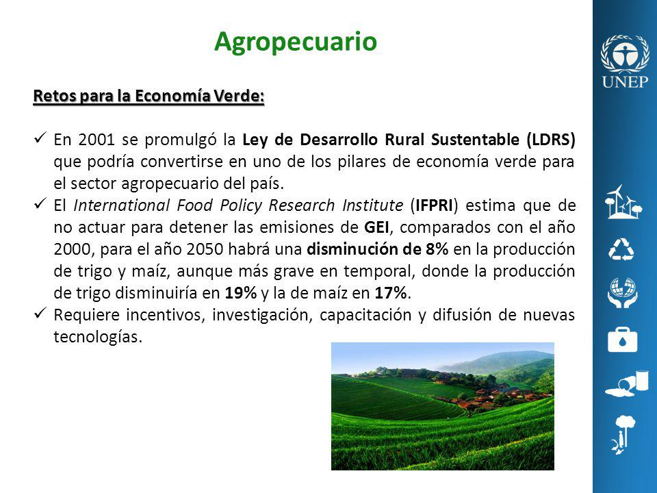 Agropecuario Retos para la Economía Verde: