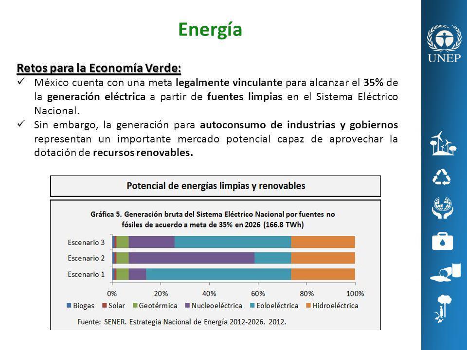 Energía Retos para la Economía Verde: