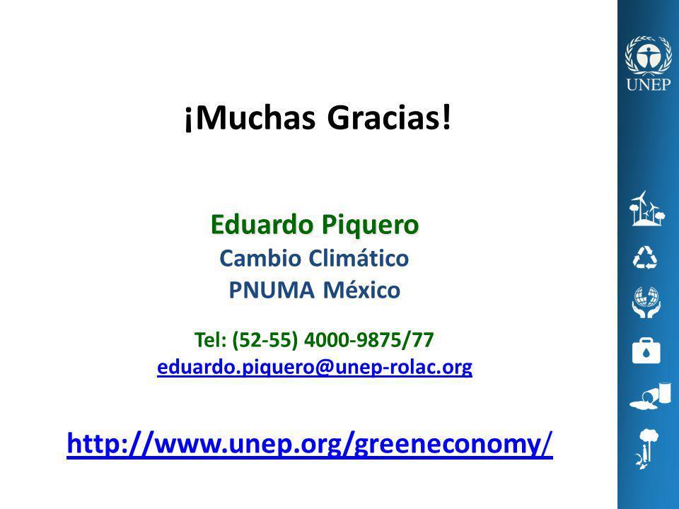 ¡Muchas Gracias! Eduardo Piquero http://www.unep.org/greeneconomy/