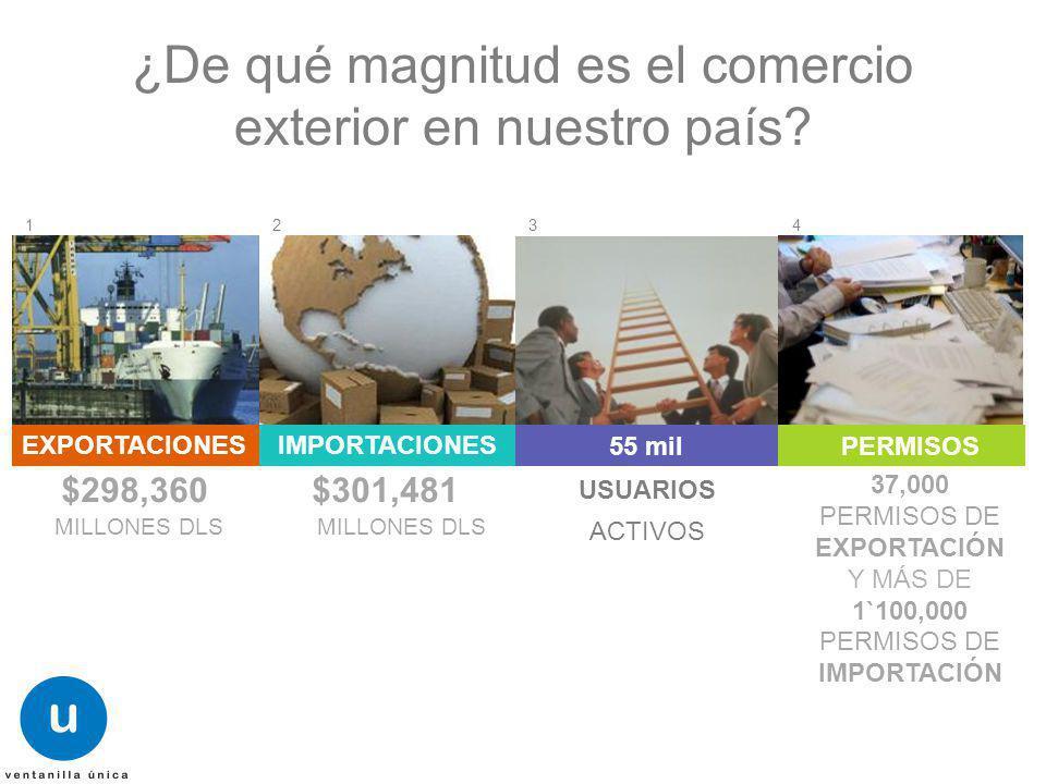 ¿De qué magnitud es el comercio exterior en nuestro país