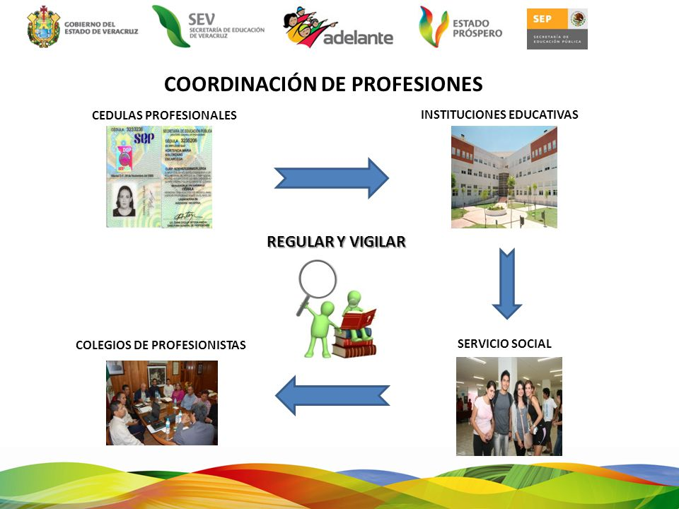 COORDINACIÓN DE PROFESIONES