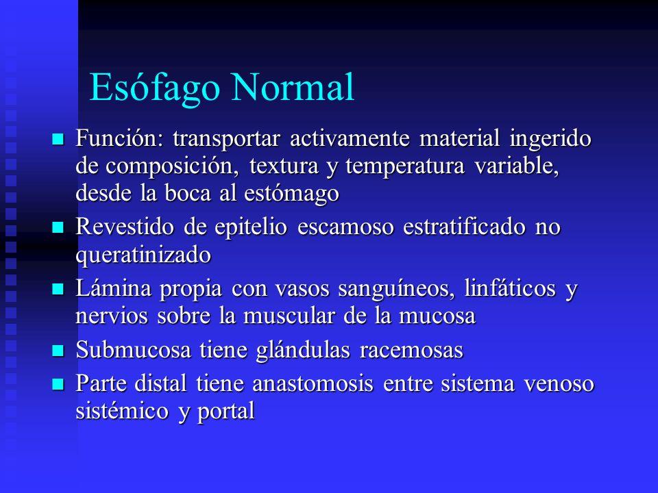Esófago Normal Función: transportar activamente material ingerido de composición, textura y temperatura variable, desde la boca al estómago.