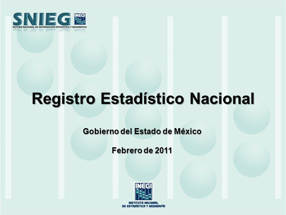 Registro Estadístico Nacional Gobierno del Estado de México