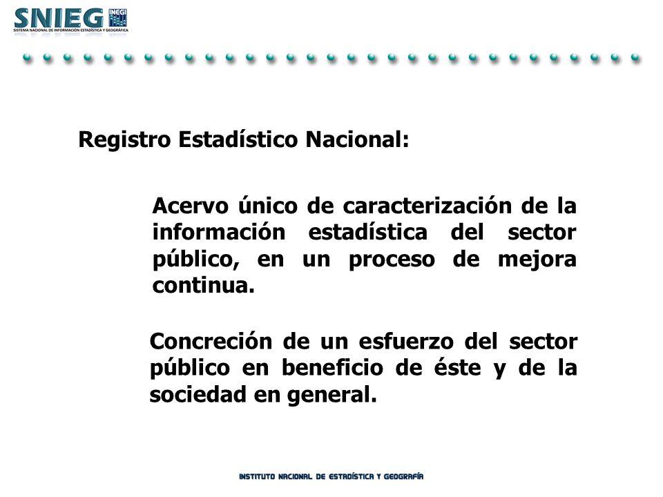 Registro Estadístico Nacional: