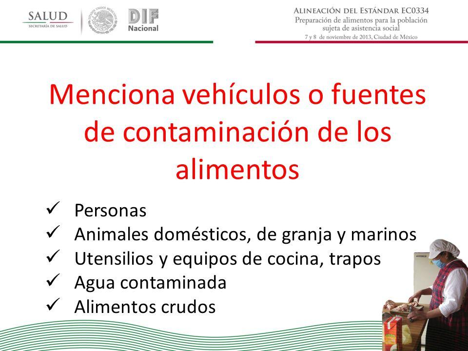 Menciona vehículos o fuentes de contaminación de los alimentos