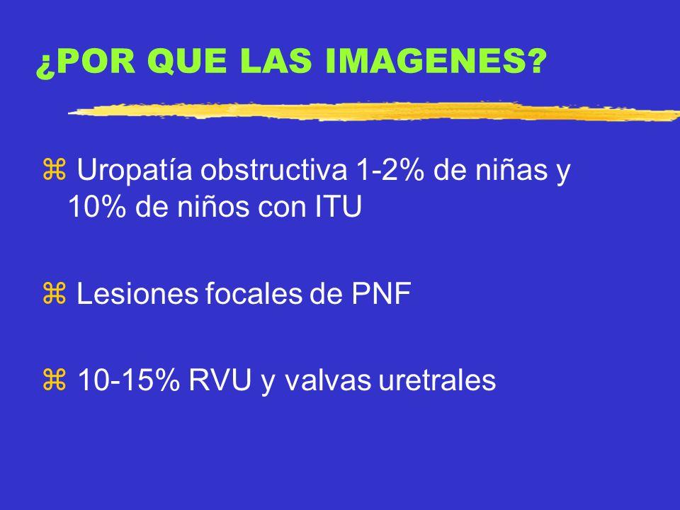 ¿POR QUE LAS IMAGENES Uropatía obstructiva 1-2% de niñas y 10% de niños con ITU. Lesiones focales de PNF.