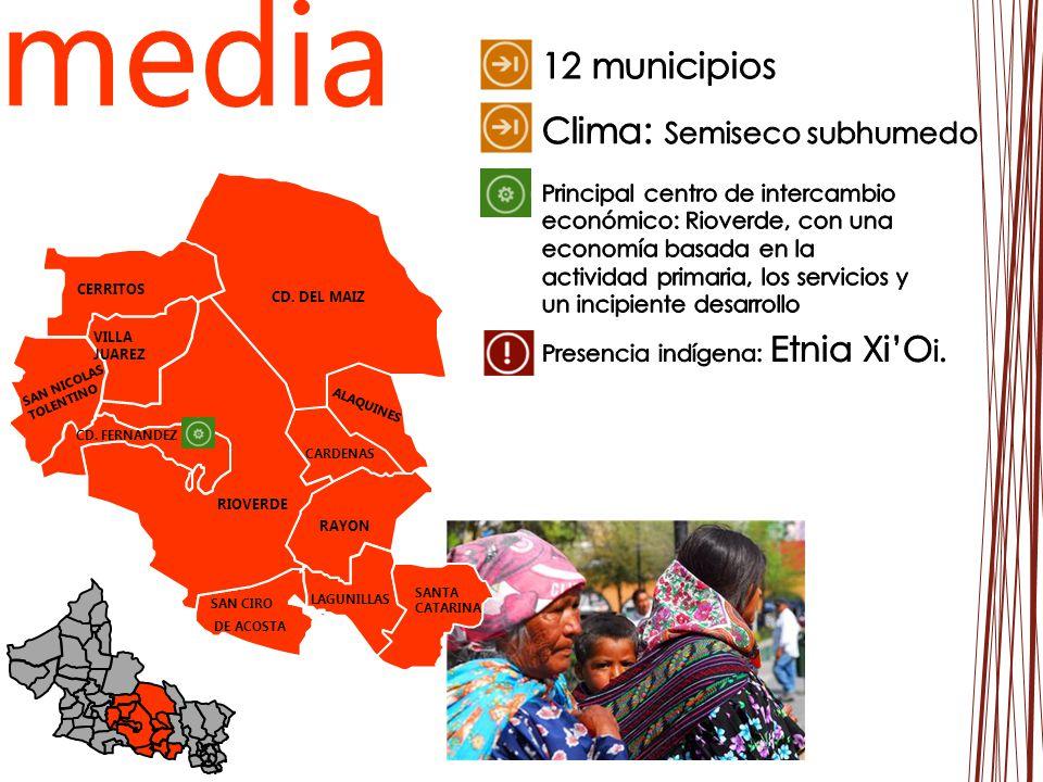 media 12 municipios Clima: Semiseco subhumedo