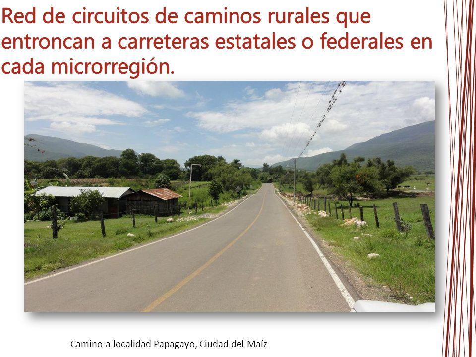 Red de circuitos de caminos rurales que entroncan a carreteras estatales o federales en cada microrregión.