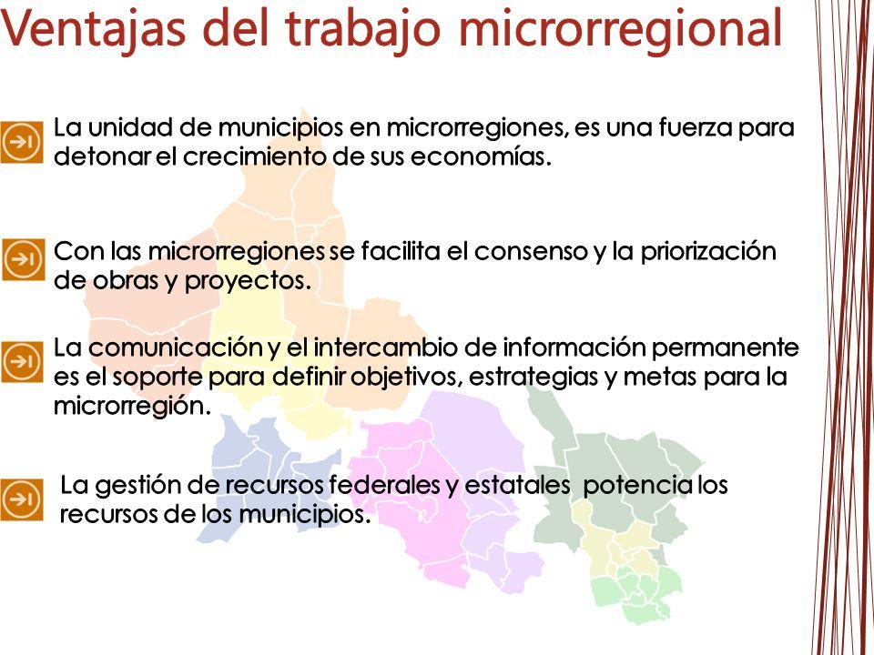 Ventajas del trabajo microrregional
