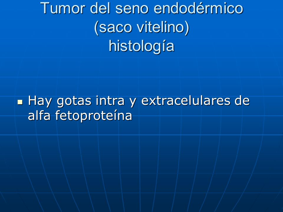 Tumor del seno endodérmico (saco vitelino) histología