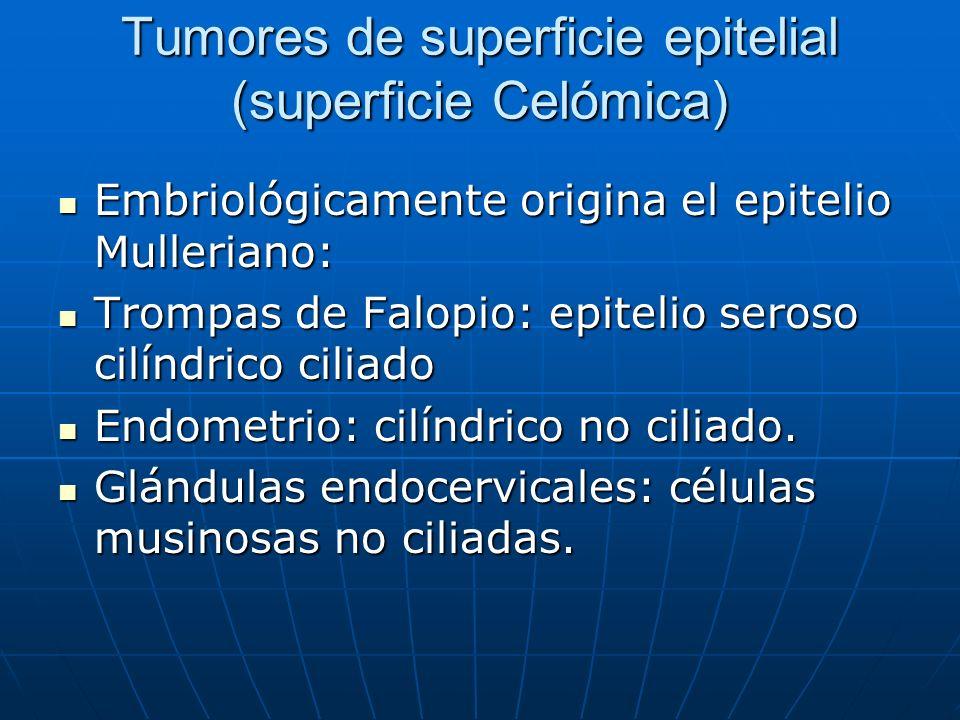Tumores de superficie epitelial (superficie Celómica)