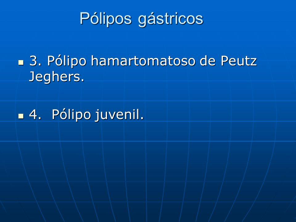 Pólipos gástricos 3. Pólipo hamartomatoso de Peutz Jeghers.