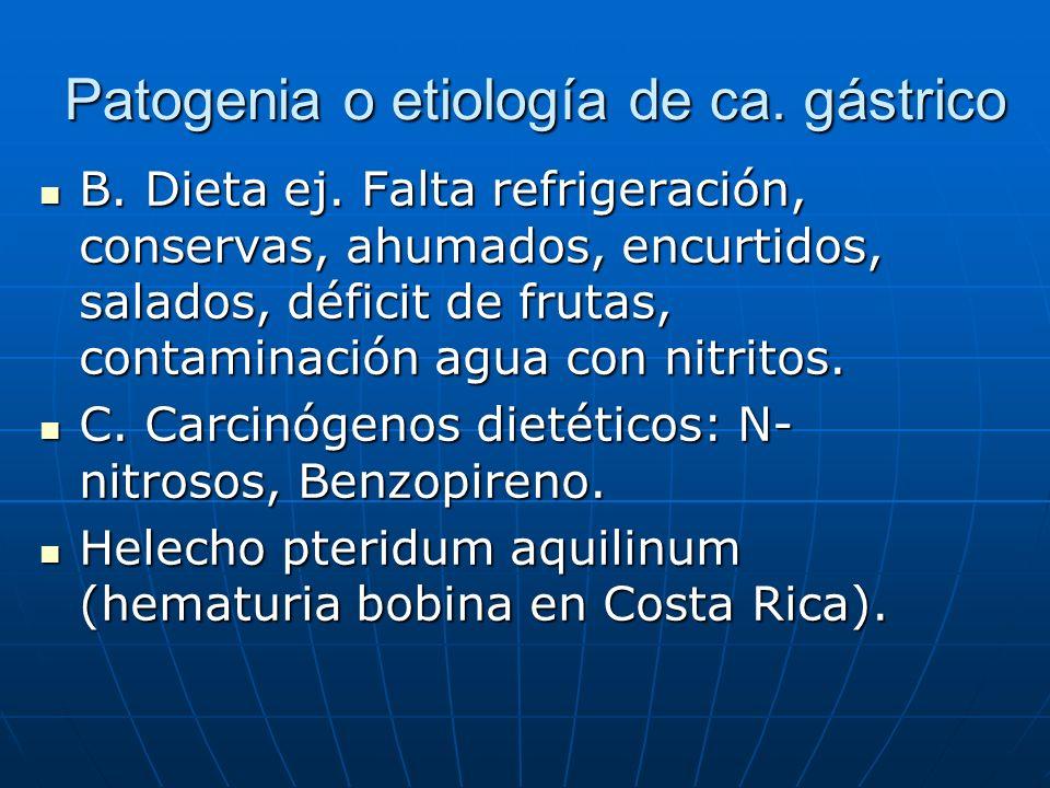 Patogenia o etiología de ca. gástrico