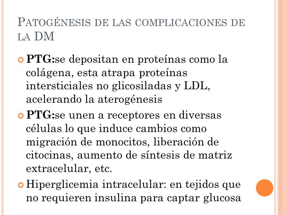 Patogénesis de las complicaciones de la DM