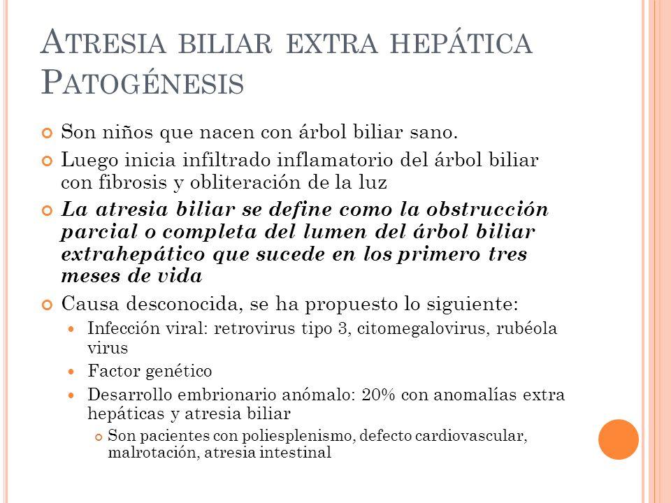Atresia biliar extra hepática Patogénesis